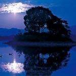 風景㊾ 〜 平池の夜明け