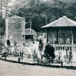 お城の動物園 市民の宝物 100周年 世代超え愛される憩いの場 5月5日にイベント第1弾