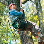 樹上の世界へご案内 ツリークライミング 指導10年目の青木さん 6月から偶数月に体験会