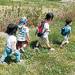 よくする法案 〜 未就学児に月2回の自然体験を