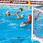 小中高生 燃えるは水球 クラブチーム「リーガ和歌山」 7、8月に教室