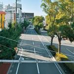 和歌山市駅前 緑の広場に変身 9月12、13日  歩行者天国 地元と和大 連携し社会実験