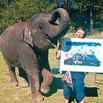自然との共生 伝える象使い 和歌山市の大亦理絵さん 10月12日からタイで授業担当