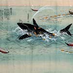 太地の捕鯨文化知って 県立博物館 初の企画展