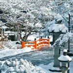 CLASSIC WAKAYAMA VOL.8 White Christmas