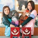 ロックなカット わんダフル トリミングコンテスト 藤本さん、西村さん入賞