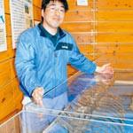 海の王者モササウルス 自然博物館で化石公開