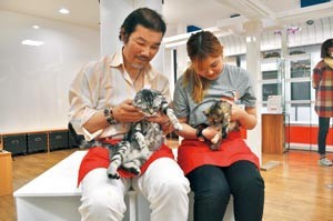 2016073003_catcafe