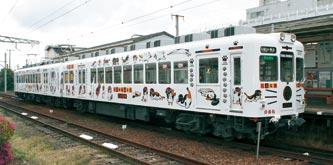 たま電車_dc