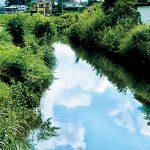大門川へ通じる宮井用水
