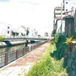 歴史刻む市堀川の石垣