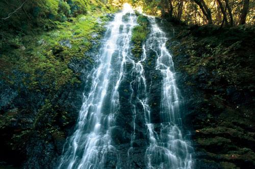 滝物語⑤ 信仰集めた雨後の滝〜才助の滝 (串本町)