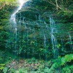 滝物語⑥ 湧き立つ〝変容の美〟〜無名滝(上富田町)