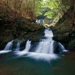 滝物語⑧ 聖域へ誘う扉〜無名滝─四村川の滝(有田川町)