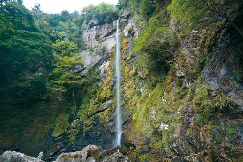 滝物語⑨ 樹海の奥に日本一?〜まぼろしの滝 (古座川町)