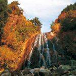 滝物語⑭ 熊野参詣者見下ろす〜牛鬼の滝(那智勝浦町)