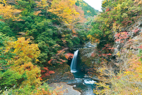 滝物語⑬ 高野四十八滝の集大成〜大滝 (高野町)