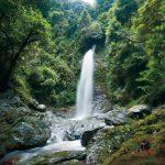 滝物語⑮ 信仰集めた空海修行の地〜黒蔵の滝 (有田川町)