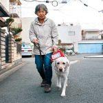 盲導犬って知ってる?