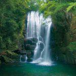 滝物語⑱ 優しい趣 女王の品格〜桑の木滝(新宮市)