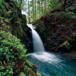 滝物語㉒ 空海が残した奇跡の滝〜越ヶ滝(橋本市)