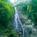 滝物語㉓ 華麗な姿 まさに〝花〟〜野の滝(新宮市)