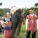 タイで象使いとして生きる