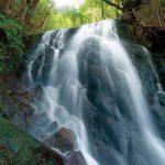 滝物語㉙ 星座と重なる滝の分布〜夜美の滝(那智勝浦町)