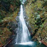 滝物語㉚ 五色の光差した修行地〜五光の滝(橋本市)
