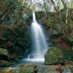 滝物語㉛ 五色の旗 降り立つ滝〜コッテの滝(海南市)