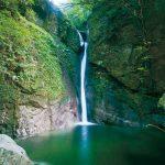 滝物語㉞ 優美な滝に悲しい物語〜犬落ちの滝(田辺市)
