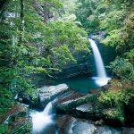 滝物語㊱ 村人往来した繭街道〜鍋津呂小谷の滝(白浜町久木)
