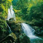 滝物語㊲ 尾根に囲まれた秘境〜中津谷の滝(古座川町)