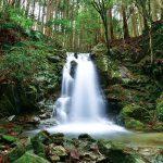 滝物語㊶ 僧兵が落ち延びた地〜新田の滝(紀の川市)
