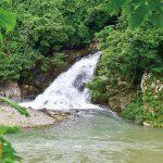 滝物語㊿ 雨晴占う白黒の魚〜糸川の滝(有田川町)
