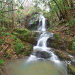 滝物語52 農耕守る神の聖地〜水神の滝(海南市孟子)