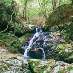 滝物語61 神が顔を洗った水〜遊女の滝(高野町上筒香)