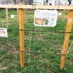 土の中の宝物〜「漆喰池」など眠る遺構