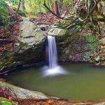 滝物語78 那智に並ぶ古道の名瀑〜音なしの滝(和歌山市滝畑)
