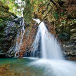滝物語79 逸話が彩る故郷の滝〜坊主滝(日高川町上初湯川)