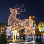 光の祭典 今年も開幕〜ポルトでフェスタ・ルーチェ