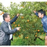 観音山フルーツガーデン 農業やりたい若者支援