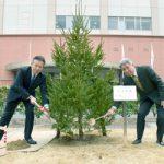 和歌山RCがモミの木植樹