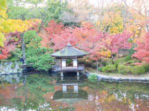 和歌山城紅葉渓庭園の紅葉見ごろ