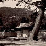 紀州百景85〜徳川家別邸双青寮(昭和)