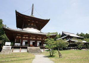 夏の子ども企画展「根来寺のけいだいを歩く〜国宝・重要文化財の建物をしる」